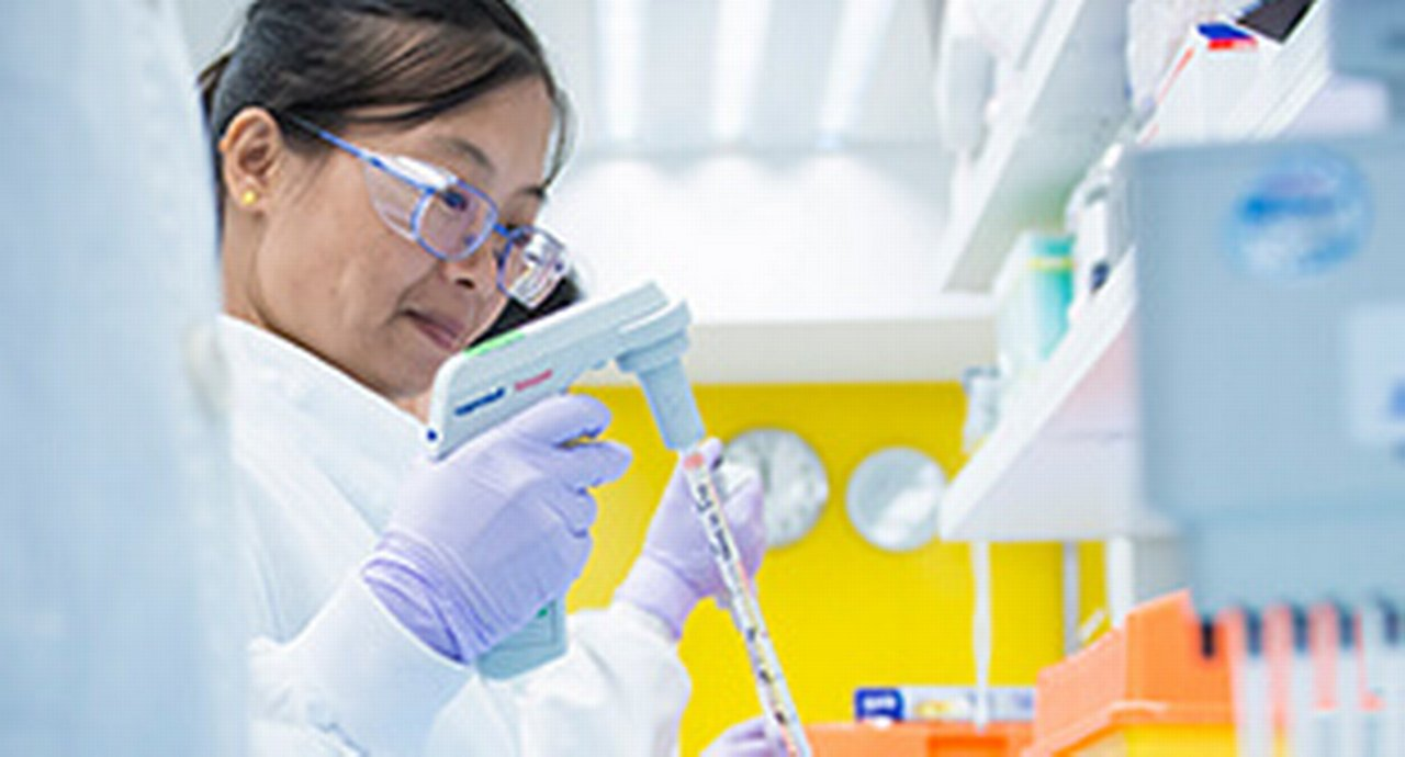 An Asian female laboratory technician very focused on pipetting